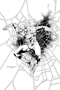 Spiderman with web by aethibert