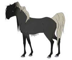 Flaxen Black Roan Adopt by Quickdopts