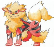Arcanine by Noodlerelleh