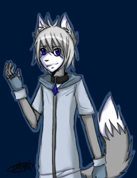 Akio the wolf. by Zlati4-FurrySlasher