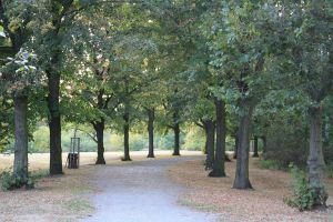 Autumn Park 3 by pelleron-stock