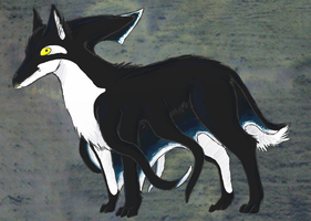 Wolf Squid Killer-Whale hybrid by DrawingShadow