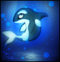 Orca by SuzannaS