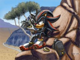 Shadow: Banded by NetRaptor