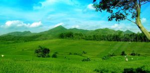 journey to east java_2 by yahya12