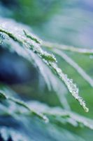 drops 02 by restive-wench