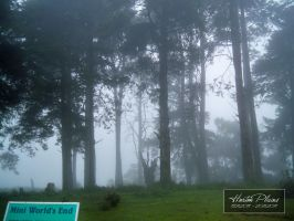 Horton Plains by chanuka30wh