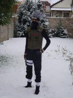 Kakashi snow 8  standing by e431