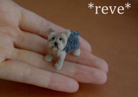 OOAK Handmade Miniature Yorkshire (Yorkie) Terrier by ReveMiniatures