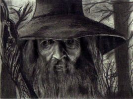 Gandalf the gray!! by IXxSerrartexXI