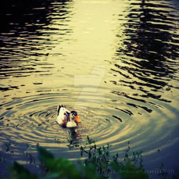 Ripple... by addy-ack