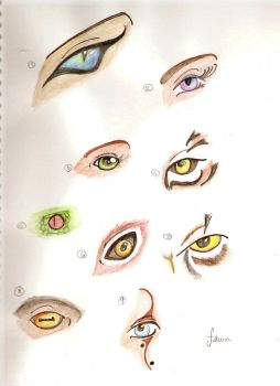 Sketch of eyes by FawnsWonderland