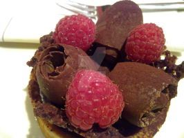 Chocolate and Raspberry 02 by sour-chocolate