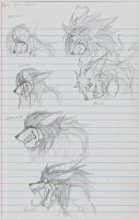 Ricos forms by Omnoproxyl337