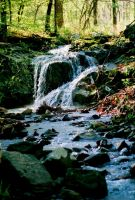 Falls In the Hollow - Below My Cabin by GaryCourtneyAuthor
