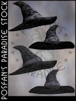 Wizard/Witch Hats 005 by poserfan-stock