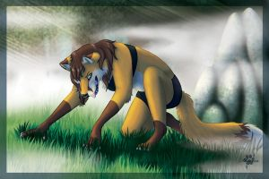 From the Mists by Silvixen