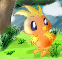 Torchic by poke-gang