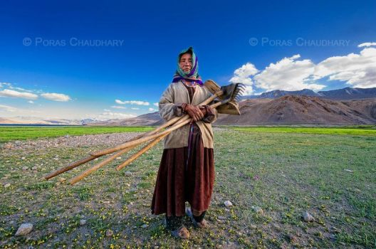 Lady Farmer of Korzok by poraschaudhary