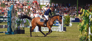 Show Jumping 21 by JullelinPhotography