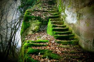Steps to your past by Malleni