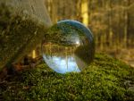 glass sphere in the woods by Acrylicdreams