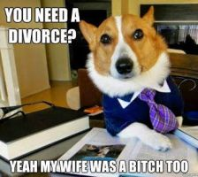 You need a divorce?? by cosenza987
