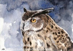 Eagle Owl Twilight ACEO by Pannya