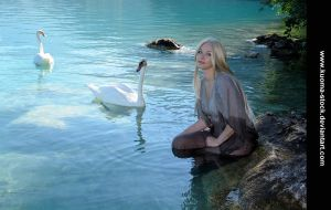 Swan Lake 5 by Kuoma-stock