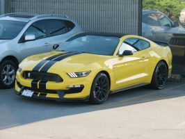 The all new GT350 by SeanTheCarSpotter