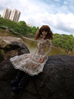 Jubilee at Bishan Park II by dreamstone