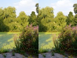 The Sydenham Wells Park Pond In Stereo by aegiandyad