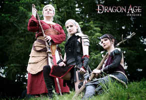 Dragon Age: Origins - On our way III by LadyTenebraeTabris