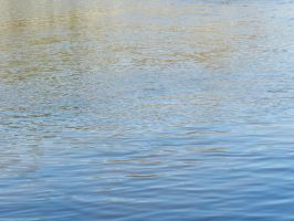 Water Texture from Milbunie Dam 2011 by EveyD