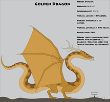 Fantasy Race: Golden Dragon by Kurvos