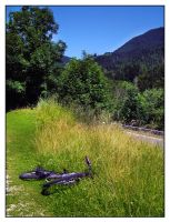 where is she? by Je-Nice