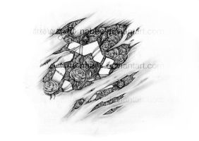 Roses and stars by nabey