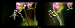 Bee-ing busy by calimer00