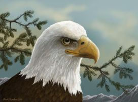 The Regal Eagle by ChuckRondeau