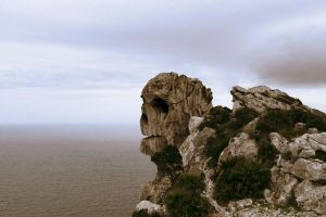 Skull Cliff by megaossa