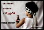 V is for FREEDOM by BarflyDance