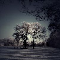 Winter fantasy by Schneeengel