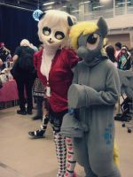 Derpy Hooves fursuit by Tinderboxer
