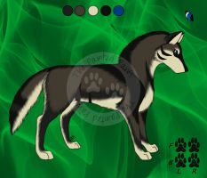 Ref Sheet: For Sanaratic by ThePaintedPaws