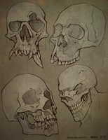 Skulls by JulioNicoletti