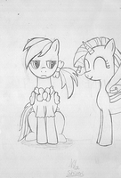 Dashie and Rarity - pencil by NitaShinori