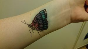 The Butterfly Project by LamLArts