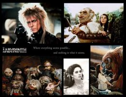 Labyrinth montage by furyfull