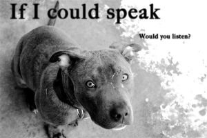 If I could speak -large- by CanisEnthusiast