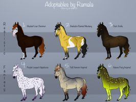 Equine Adoptables! by Ramala